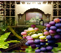 Bacchus Wine Cellars - Mobile App